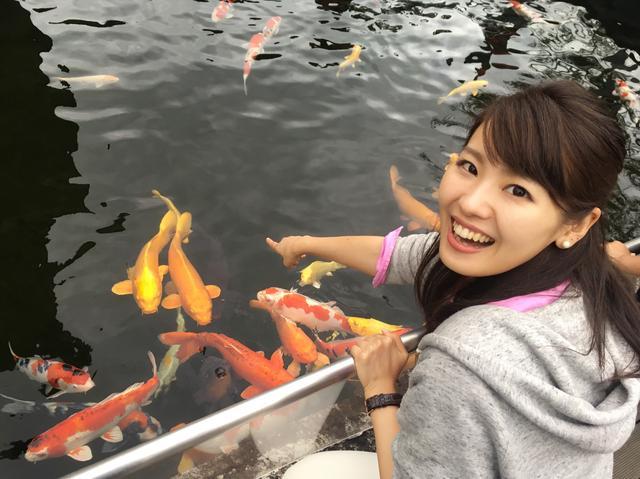 画像: 川には立派な鯉たち!餌やり(50円)も人気です♪