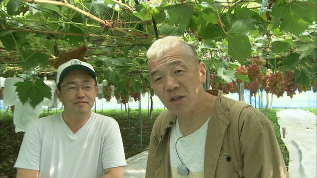 画像11: ふたつのアルプスが映える町 長野・駒ヶ根市の旅