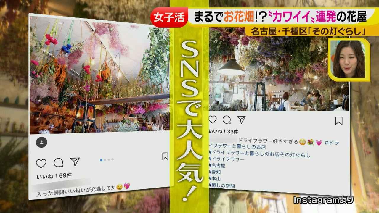 画像4: ジョシ活!かわいい話題のお店で花インテリア作り♡