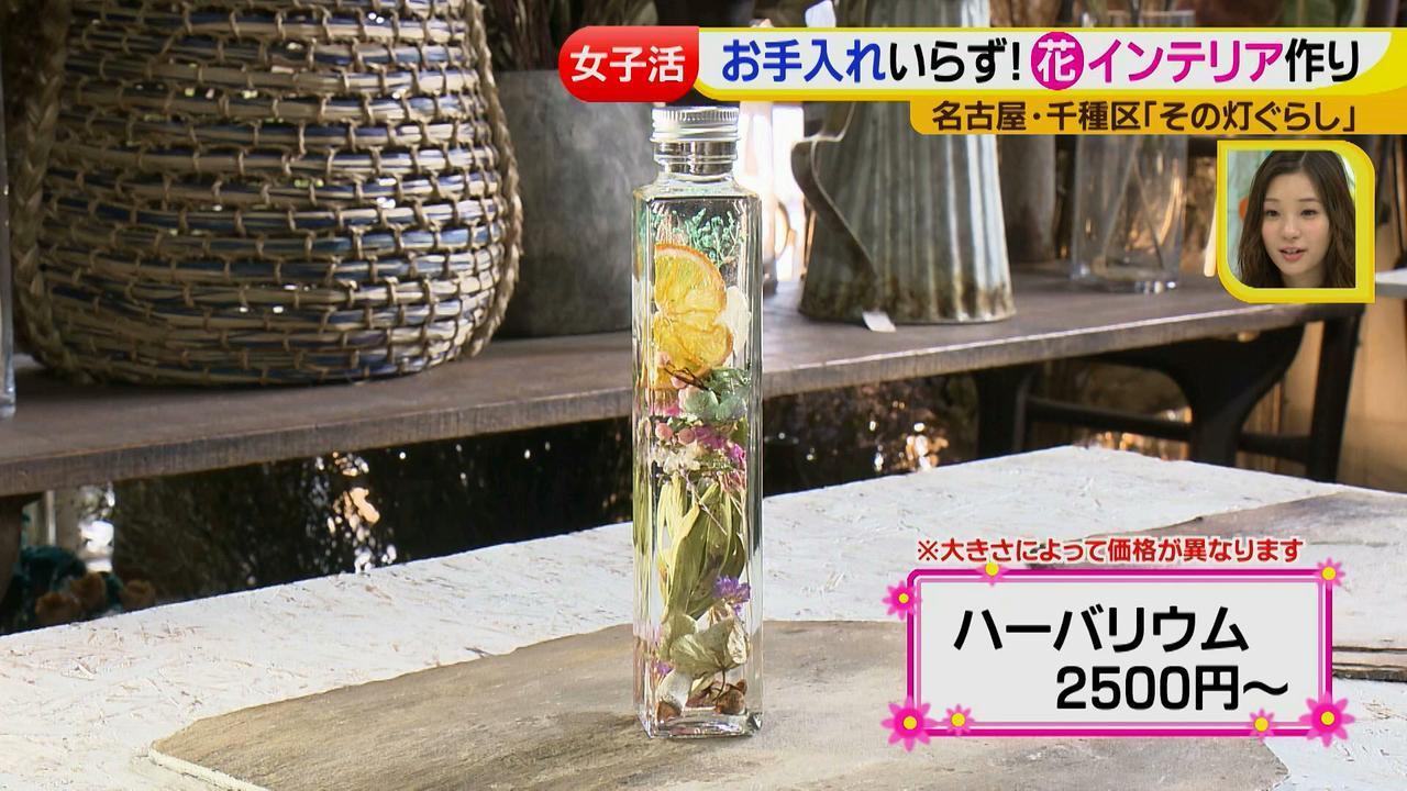 画像14: ジョシ活!かわいい話題のお店で花インテリア作り♡