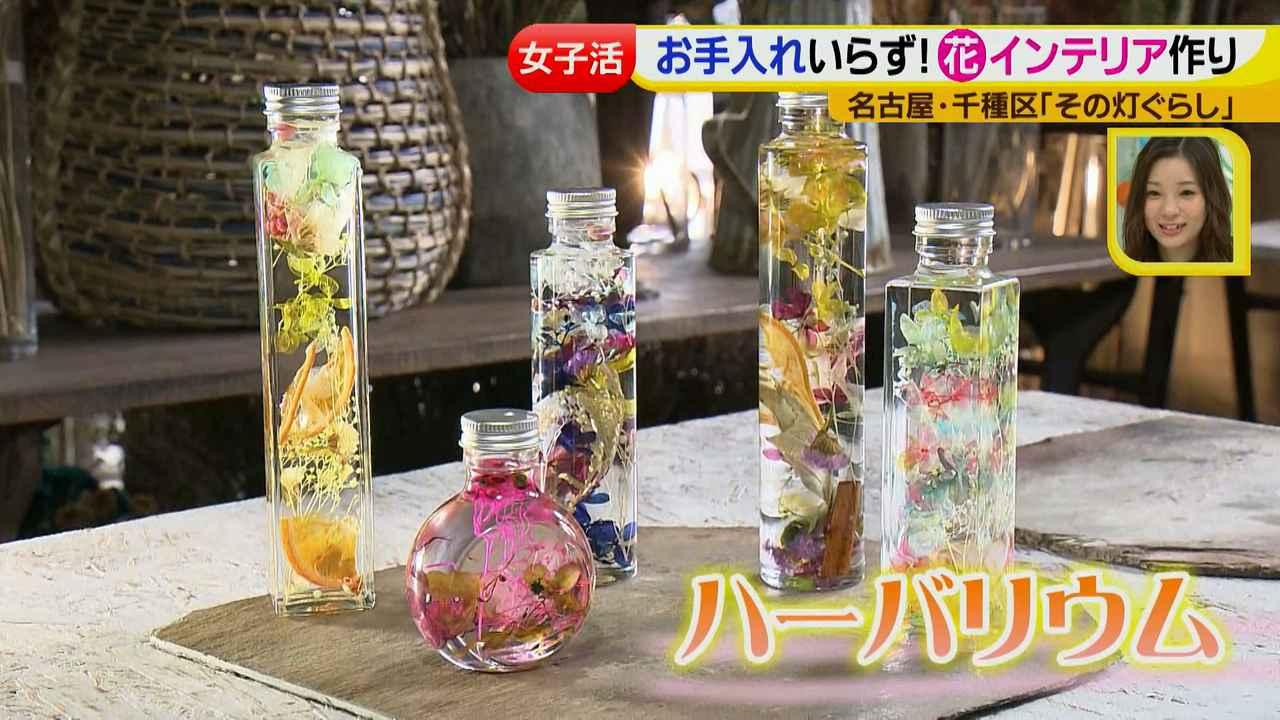 画像9: ジョシ活!かわいい話題のお店で花インテリア作り♡