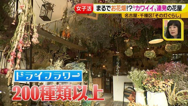 画像3: ジョシ活!かわいい話題のお店で花インテリア作り♡