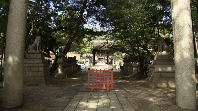 画像5: 東海道と中山道追分の宿場町 滋賀・草津市の旅