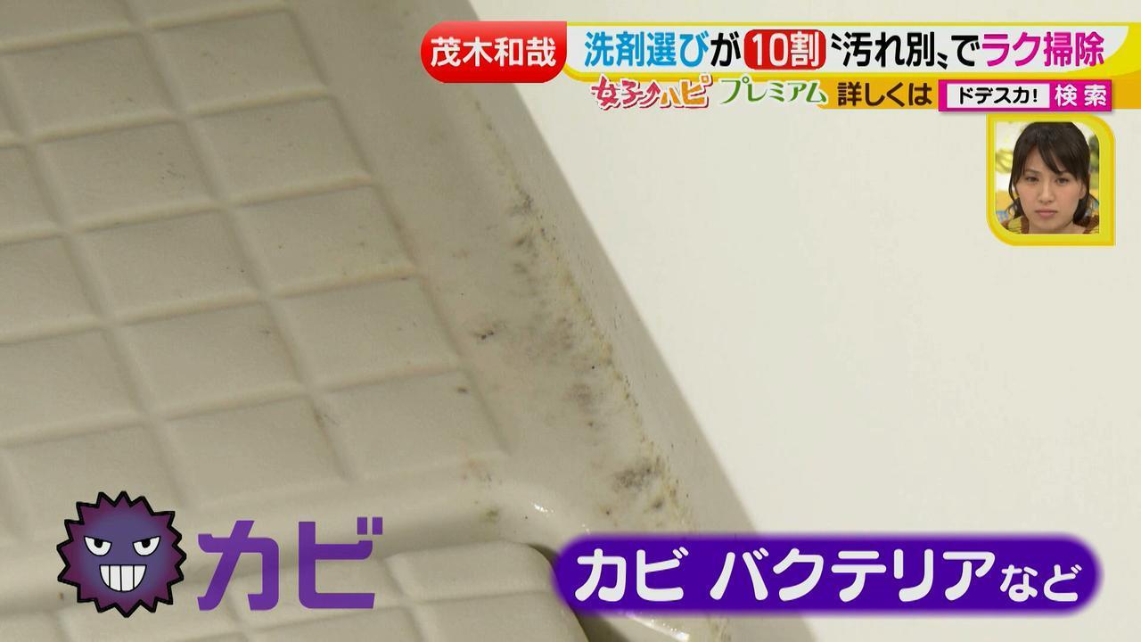 画像3: 洗剤職人のラク掃除テクニックを大公開!