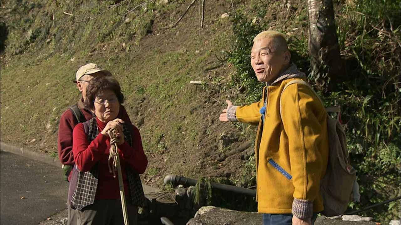 画像11: 晩秋の奥熊野 心おどる風景 三重・熊野紀和の旅