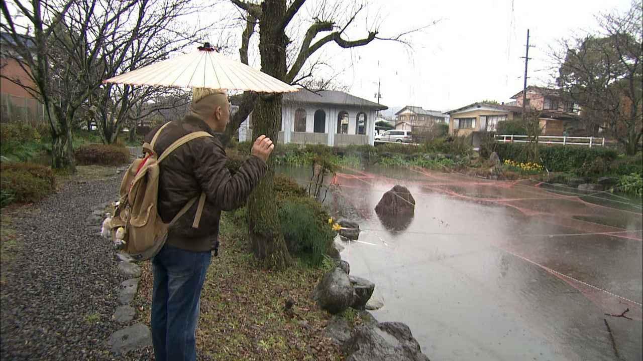画像6: 西美濃の自然パラダイス! 岐阜・池田町の旅