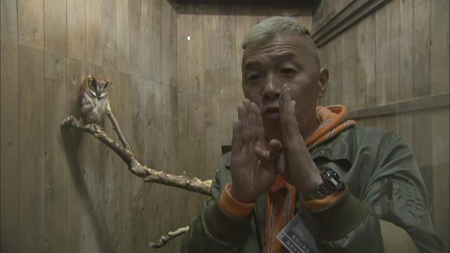 画像11: 花鳥風月を愛でる 富士山のまち 静岡・富士宮市の旅