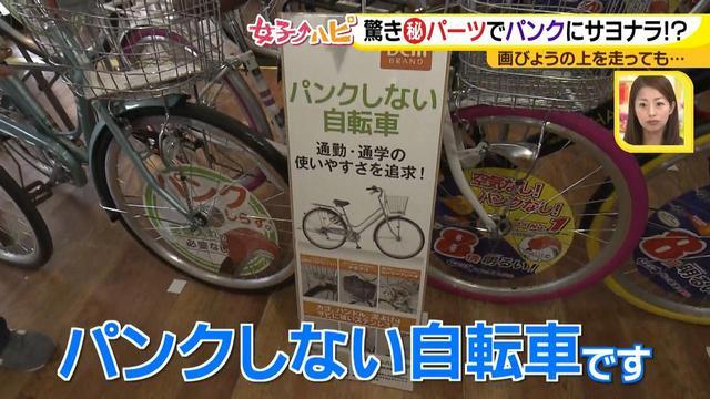画像12: チューンアップ篇 快適自転車ナビ♪