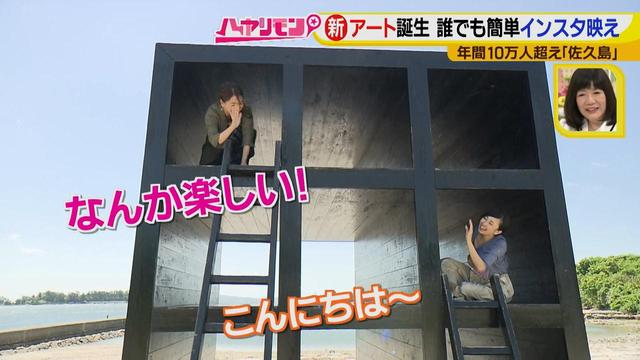 画像8: 行くなら今!「佐久島」~アート編~