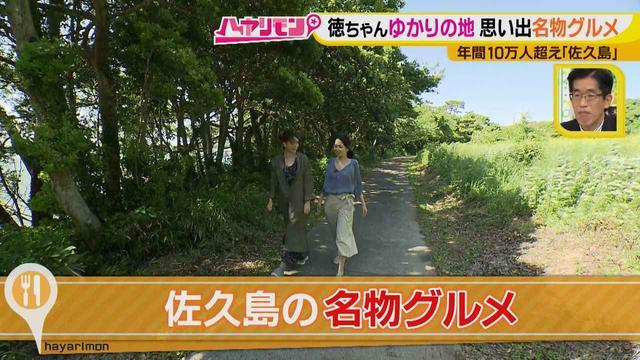 画像3: 行くなら今!「佐久島」~名物グルメ編~