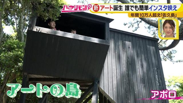 画像4: 行くなら今!「佐久島」~アート編~