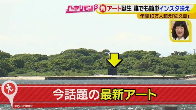 画像10: 行くなら今!「佐久島」~アート編~