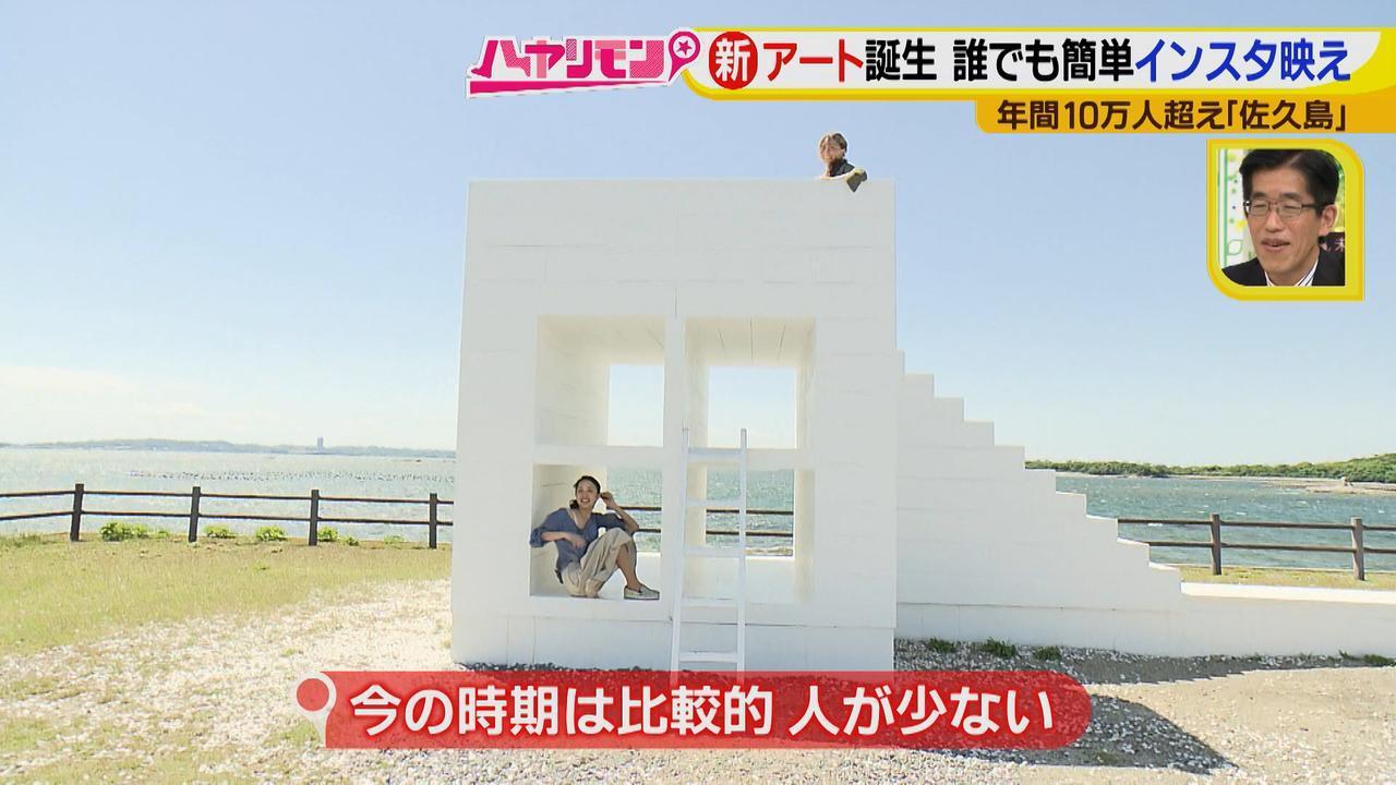 画像2: 行くなら今!「佐久島」~名物グルメ編~