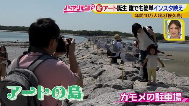 画像3: 行くなら今!「佐久島」~アート編~