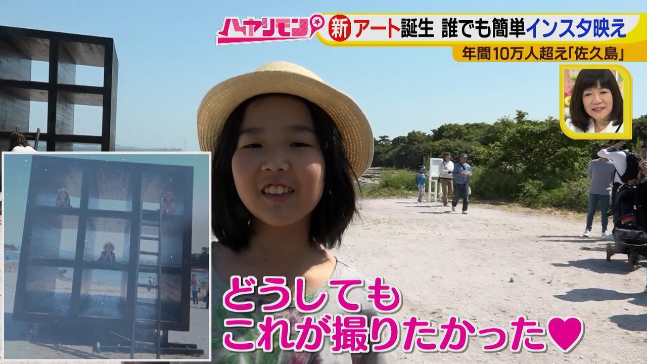 画像7: 行くなら今!「佐久島」~アート編~