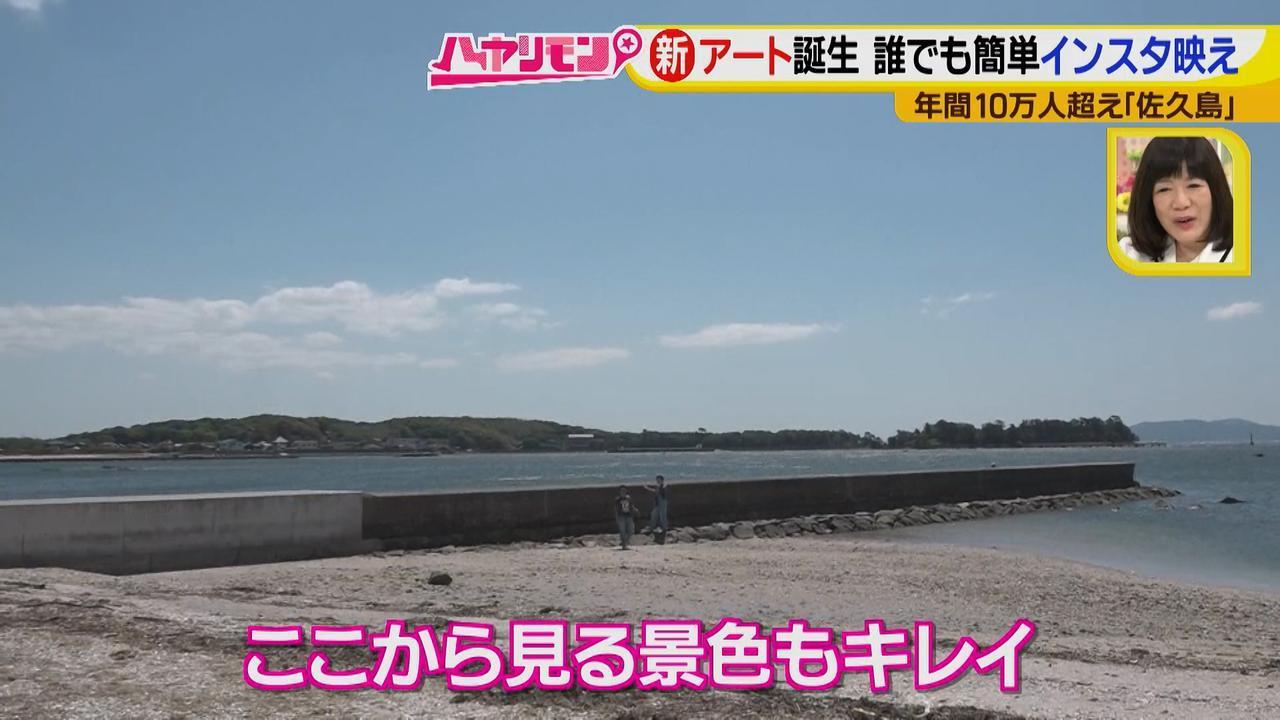 画像9: 行くなら今!「佐久島」~アート編~