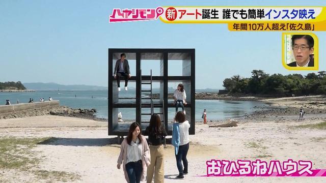 画像6: 行くなら今!「佐久島」~アート編~