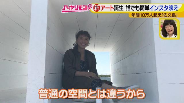 画像13: 行くなら今!「佐久島」~アート編~