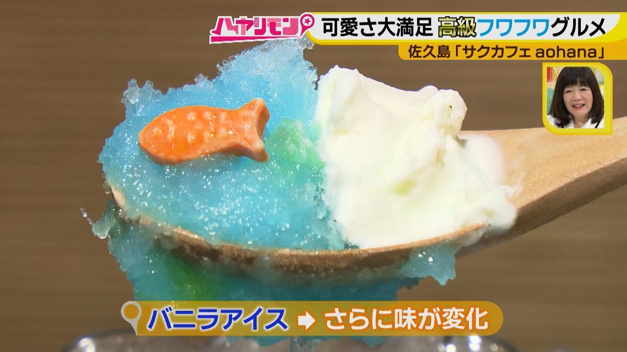 画像9: 行くなら今!「佐久島」~カフェ編~