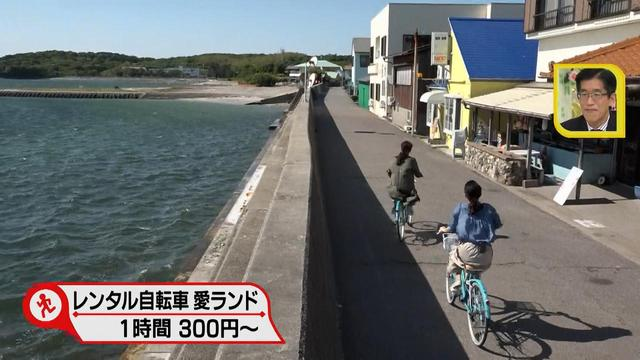 画像3: 行くなら今!「佐久島」~パワースポット編~