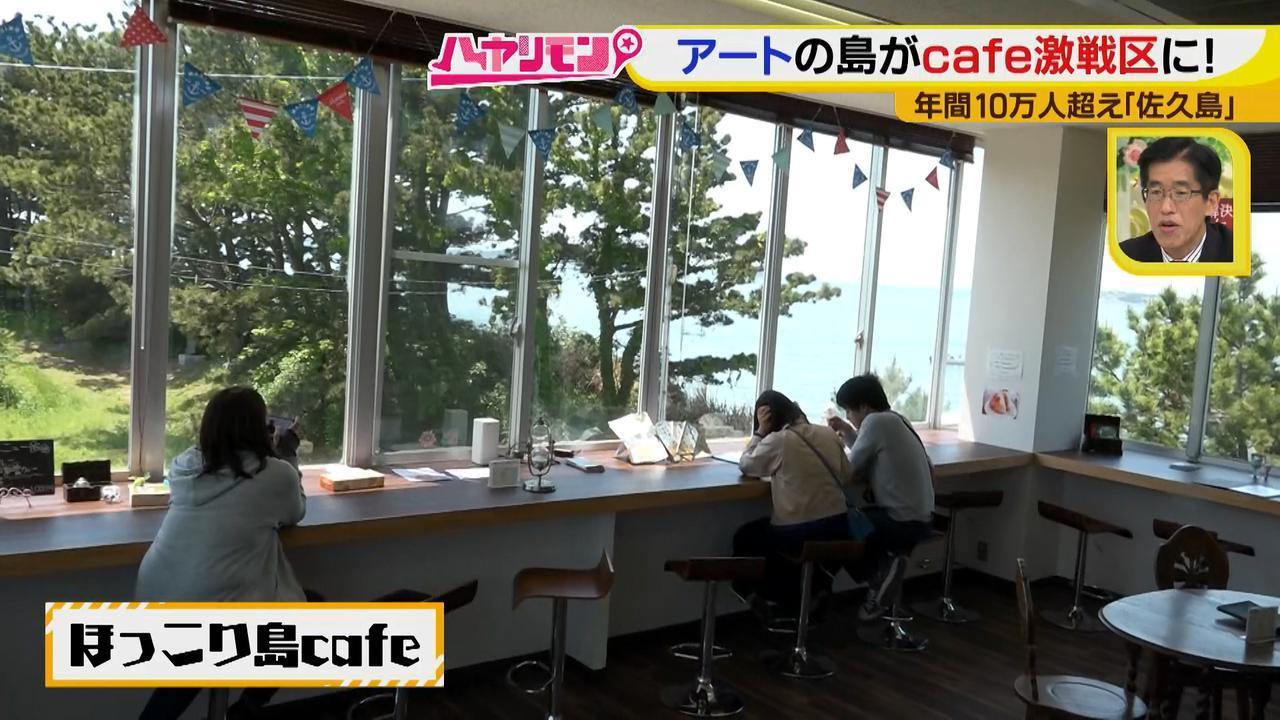 画像13: 行くなら今!「佐久島」~カフェ編~