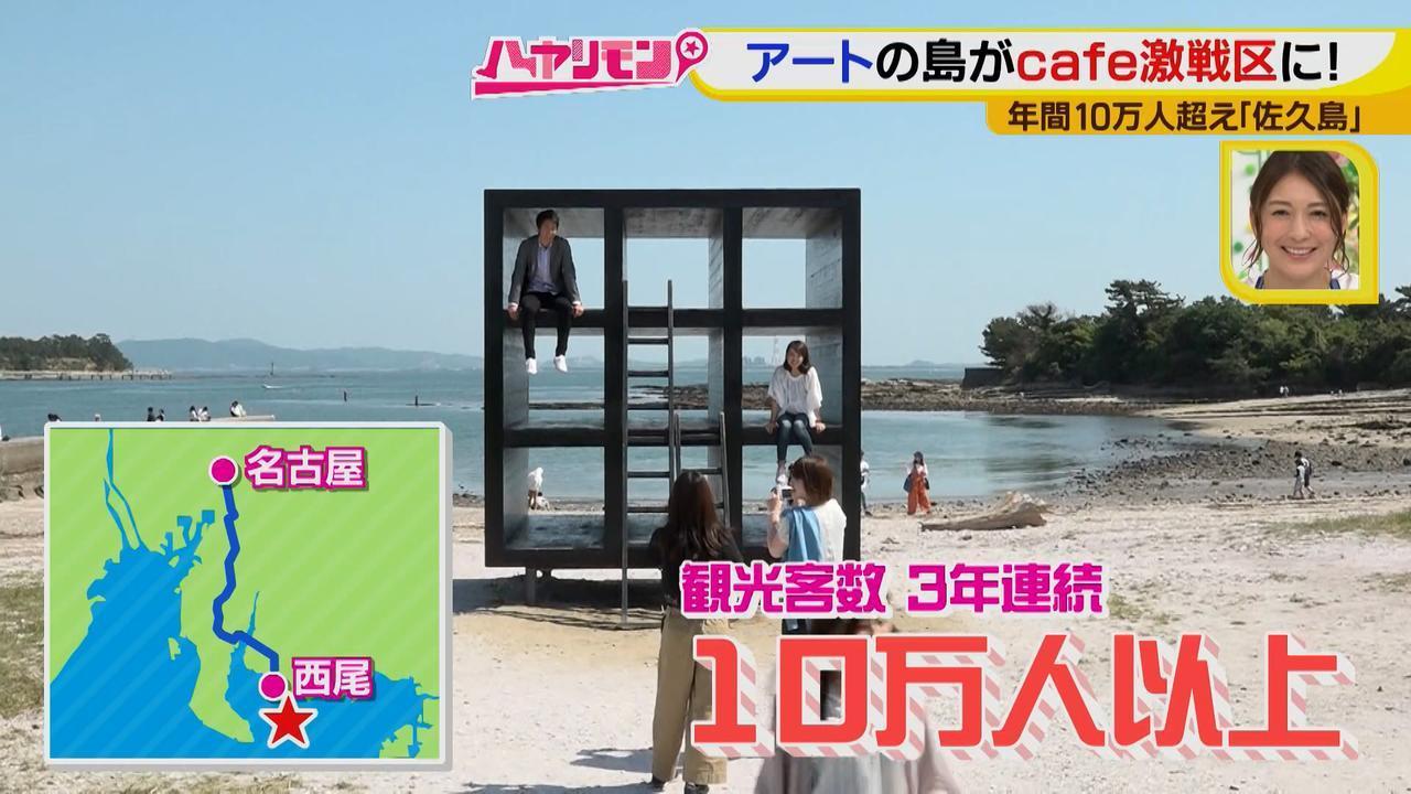 画像1: 行くなら今!「佐久島」~カフェ編~