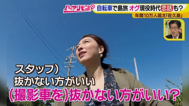 画像7: 行くなら今!「佐久島」~パワースポット編~