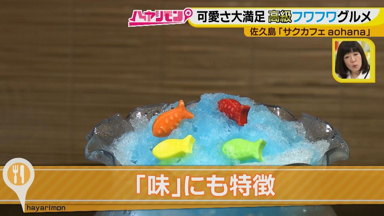 画像6: 行くなら今!「佐久島」~カフェ編~
