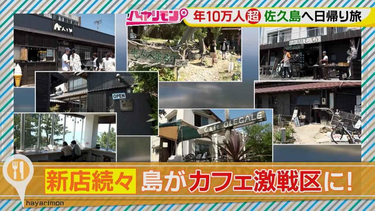 画像2: 行くなら今!「佐久島」~カフェ編~