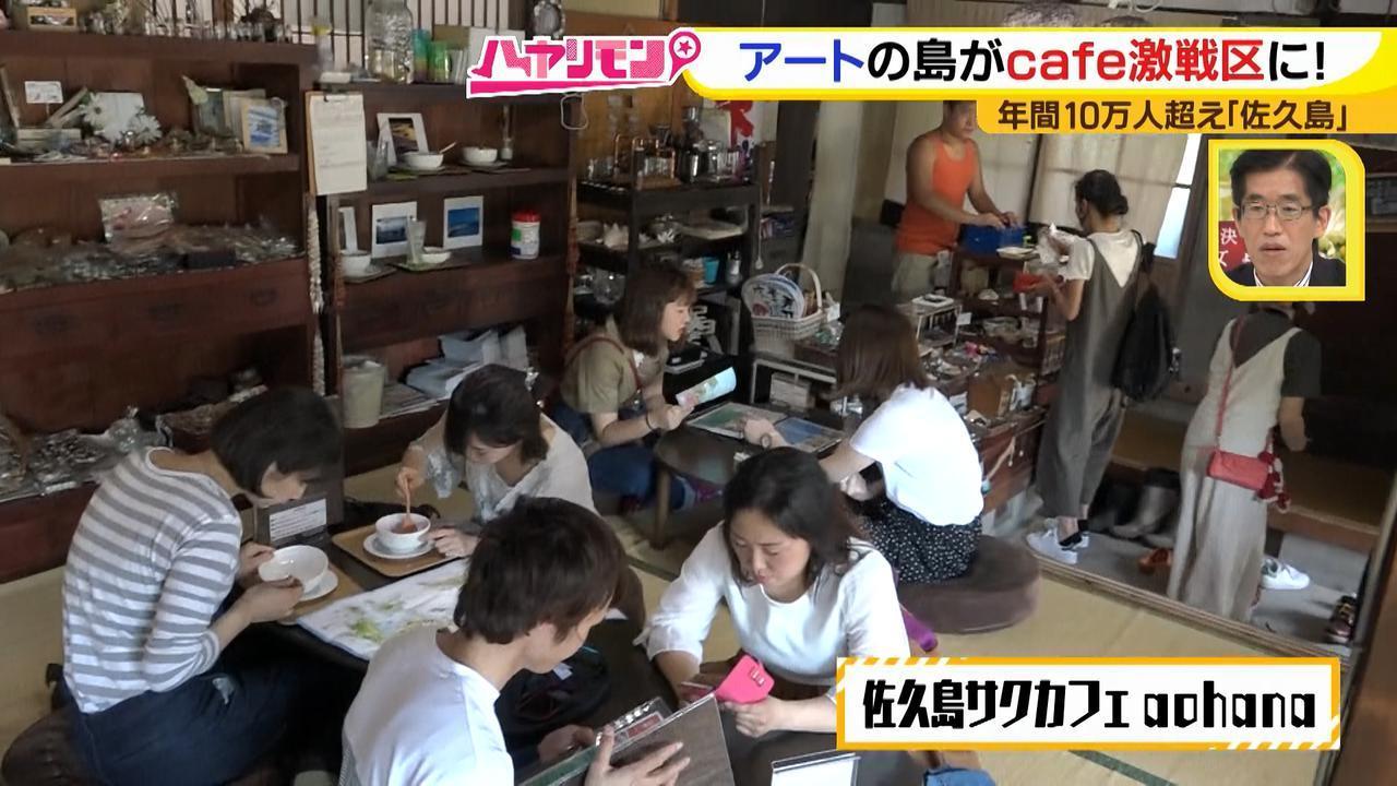 画像3: 行くなら今!「佐久島」~カフェ編~