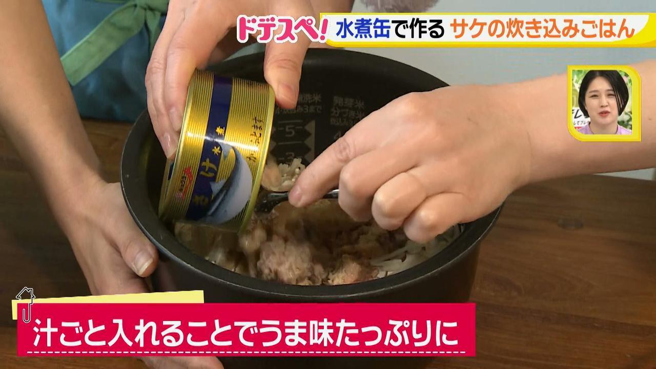 画像9: 水煮缶で時短料理!~サケの水煮缶編~