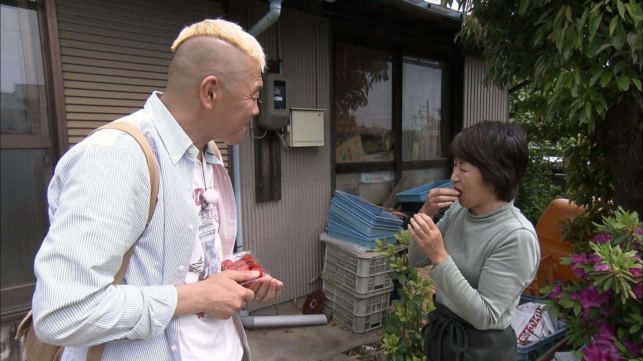画像5: 心にも寄せては返す汐干狩 西尾市幡豆の旅