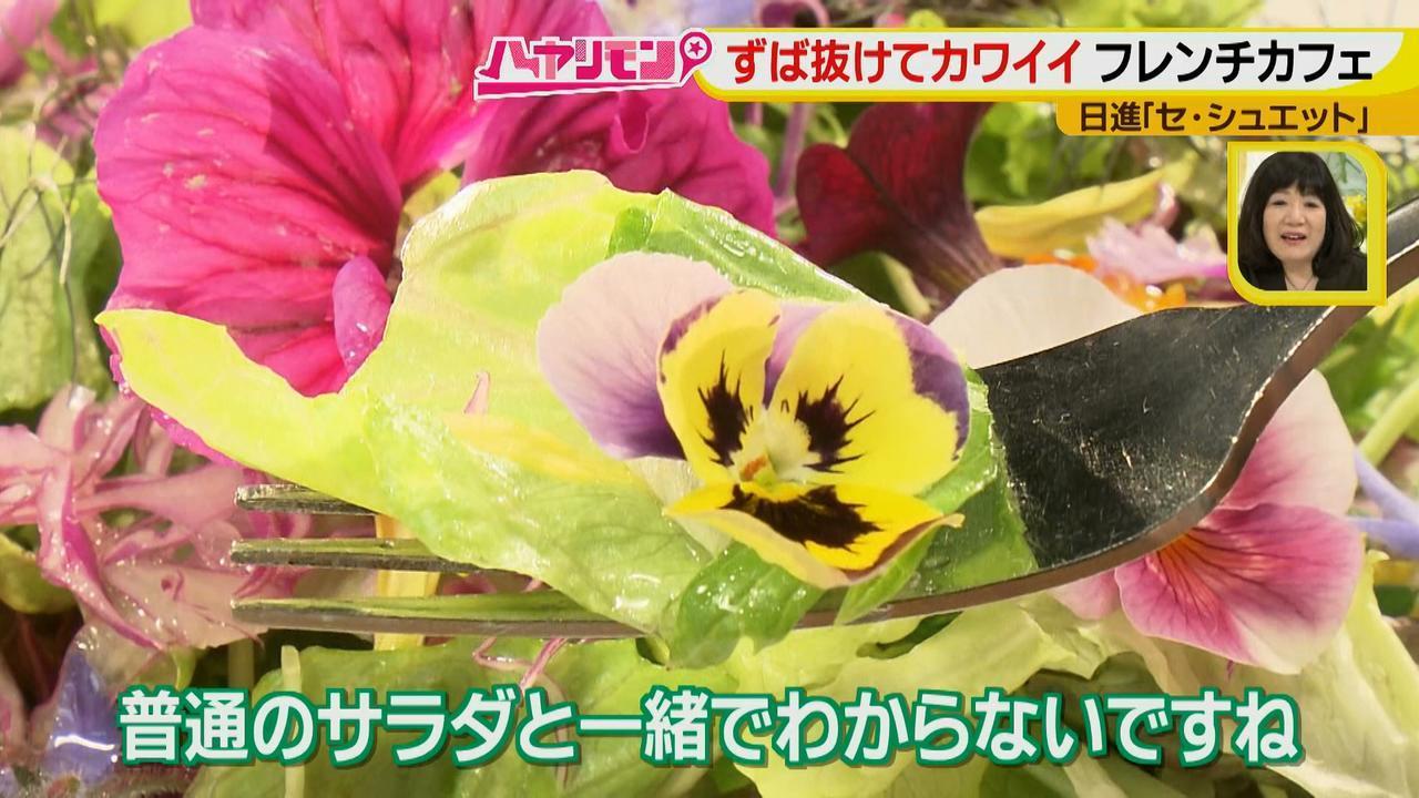 画像9: ずば抜けカワイイ☆フレンチカフェ イケメンシェフのお花畑が話題!
