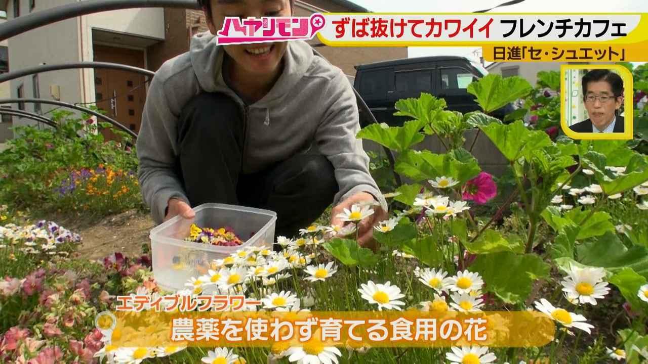 画像8: ずば抜けカワイイ☆フレンチカフェ イケメンシェフのお花畑が話題!