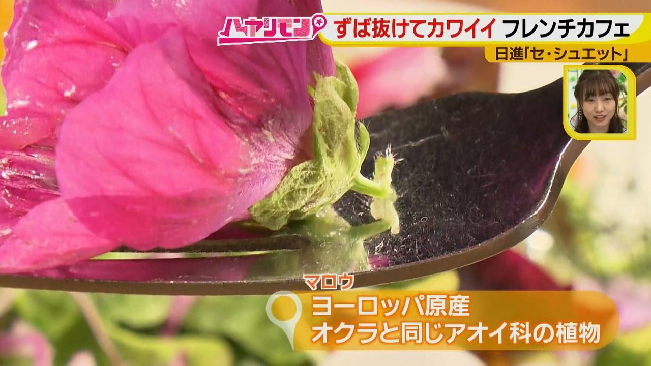 画像10: ずば抜けカワイイ☆フレンチカフェ イケメンシェフのお花畑が話題!