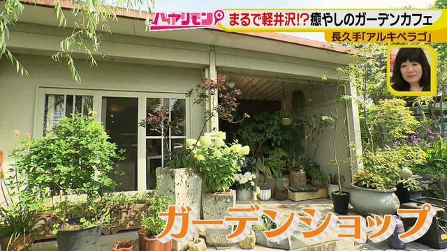画像9: お庭が選べる?!軽井沢気分にひたれる癒しのガーデンカフェ♪