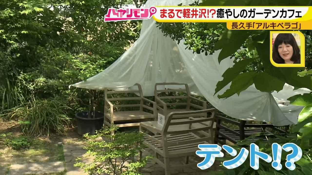 画像3: お庭が選べる?!軽井沢気分にひたれる癒しのガーデンカフェ♪
