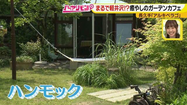 画像4: お庭が選べる?!軽井沢気分にひたれる癒しのガーデンカフェ♪