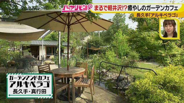 画像5: お庭が選べる?!軽井沢気分にひたれる癒しのガーデンカフェ♪