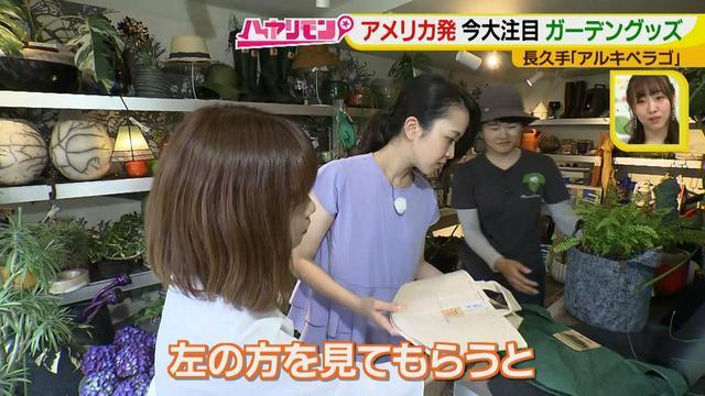 画像12: お庭が選べる?!軽井沢気分にひたれる癒しのガーデンカフェ♪