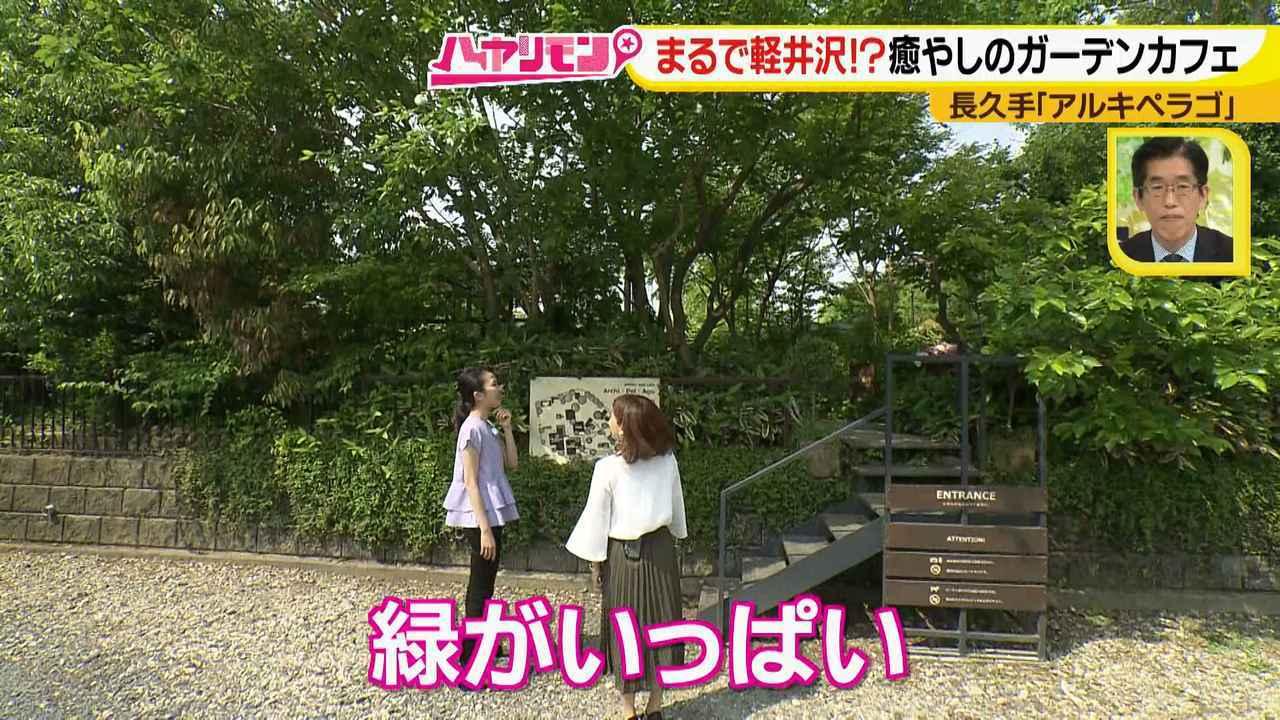 画像2: お庭が選べる?!軽井沢気分にひたれる癒しのガーデンカフェ♪