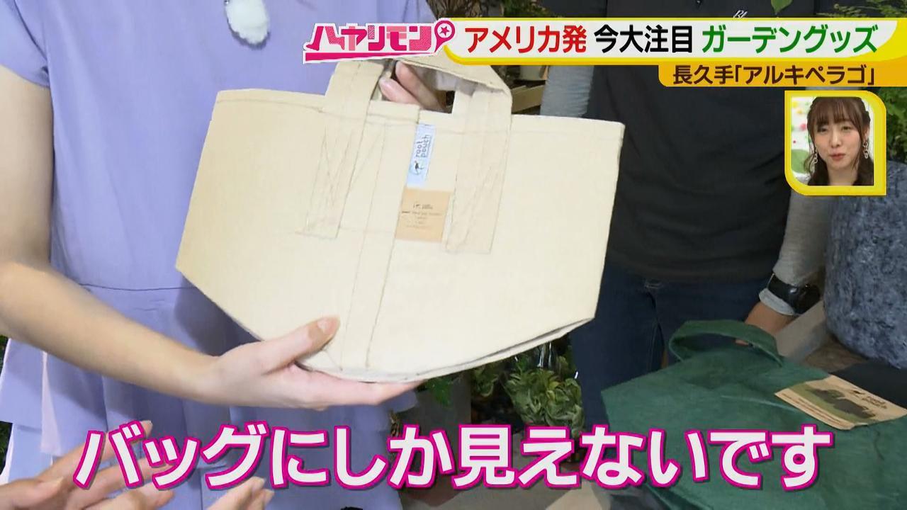 画像11: お庭が選べる?!軽井沢気分にひたれる癒しのガーデンカフェ♪