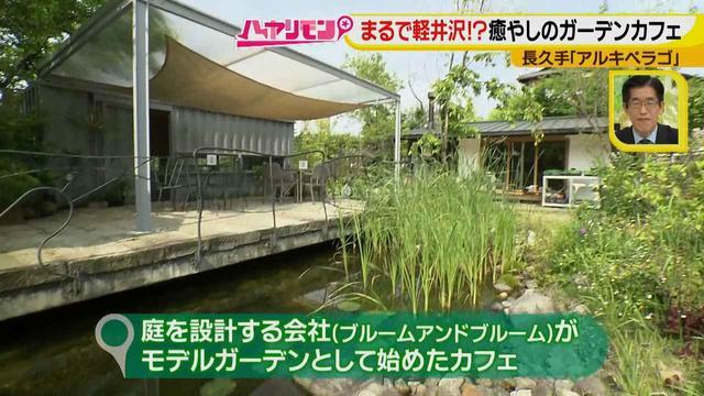 画像6: お庭が選べる?!軽井沢気分にひたれる癒しのガーデンカフェ♪