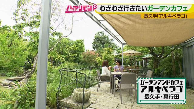 画像17: お庭が選べる?!軽井沢気分にひたれる癒しのガーデンカフェ♪