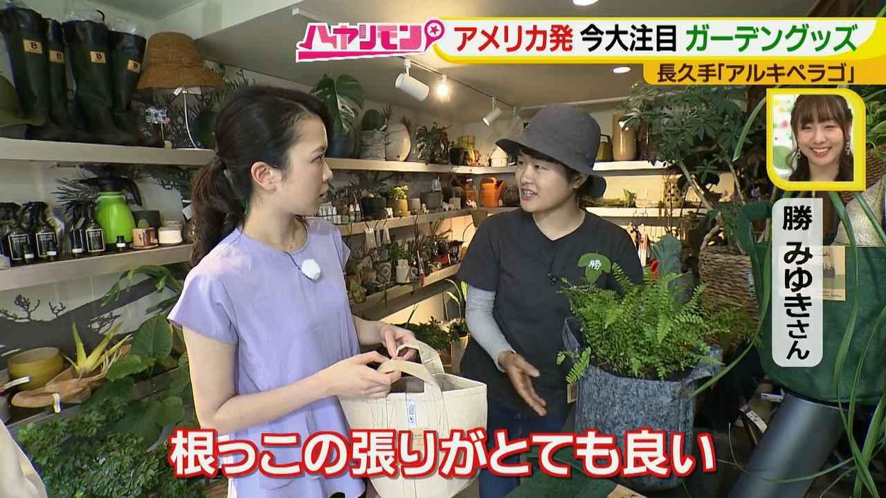 画像14: お庭が選べる?!軽井沢気分にひたれる癒しのガーデンカフェ♪