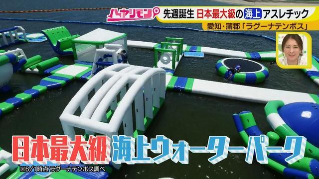 画像2: 朝から晩まで!一日中、海で遊べる蒲郡へ 日本最大級の海上アスレチックもオープン♪
