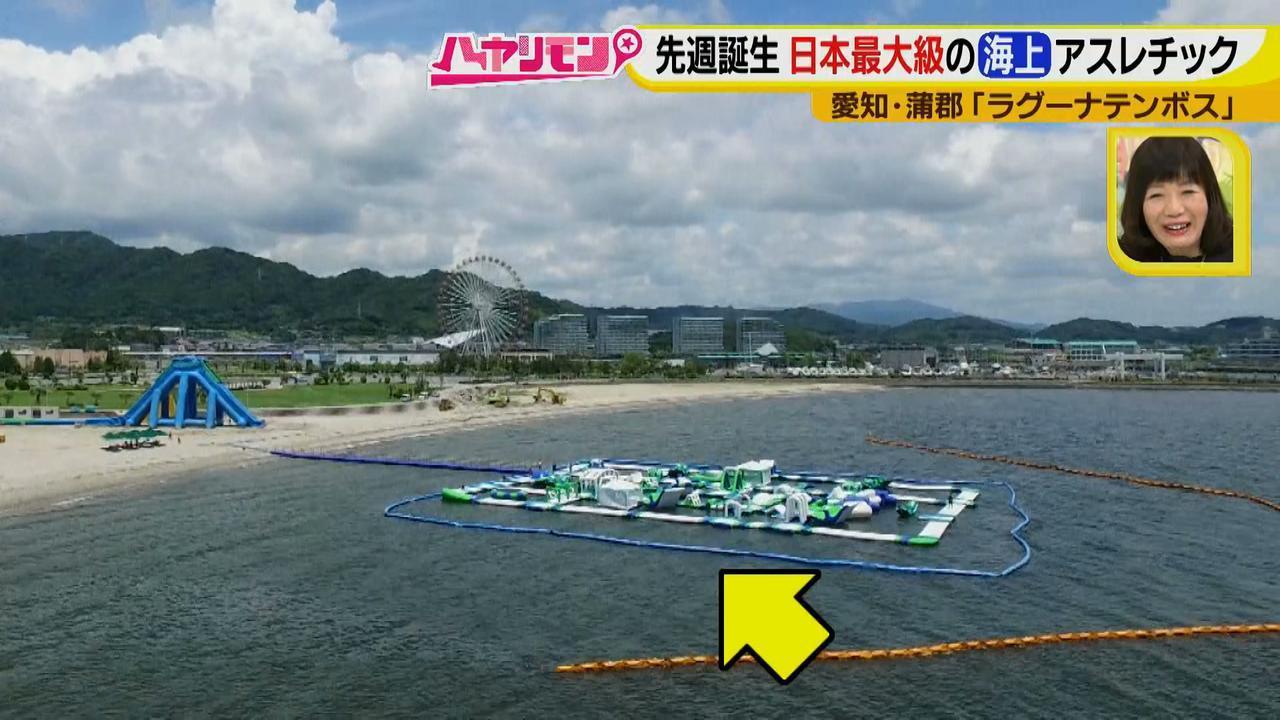画像3: 朝から晩まで!一日中、海で遊べる蒲郡へ 日本最大級の海上アスレチックもオープン♪