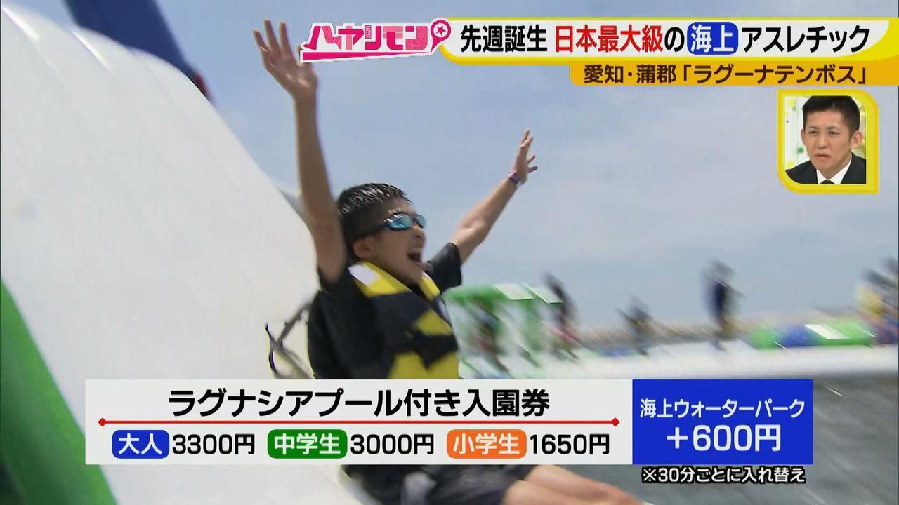 画像10: 朝から晩まで!一日中、海で遊べる蒲郡へ 日本最大級の海上アスレチックもオープン♪