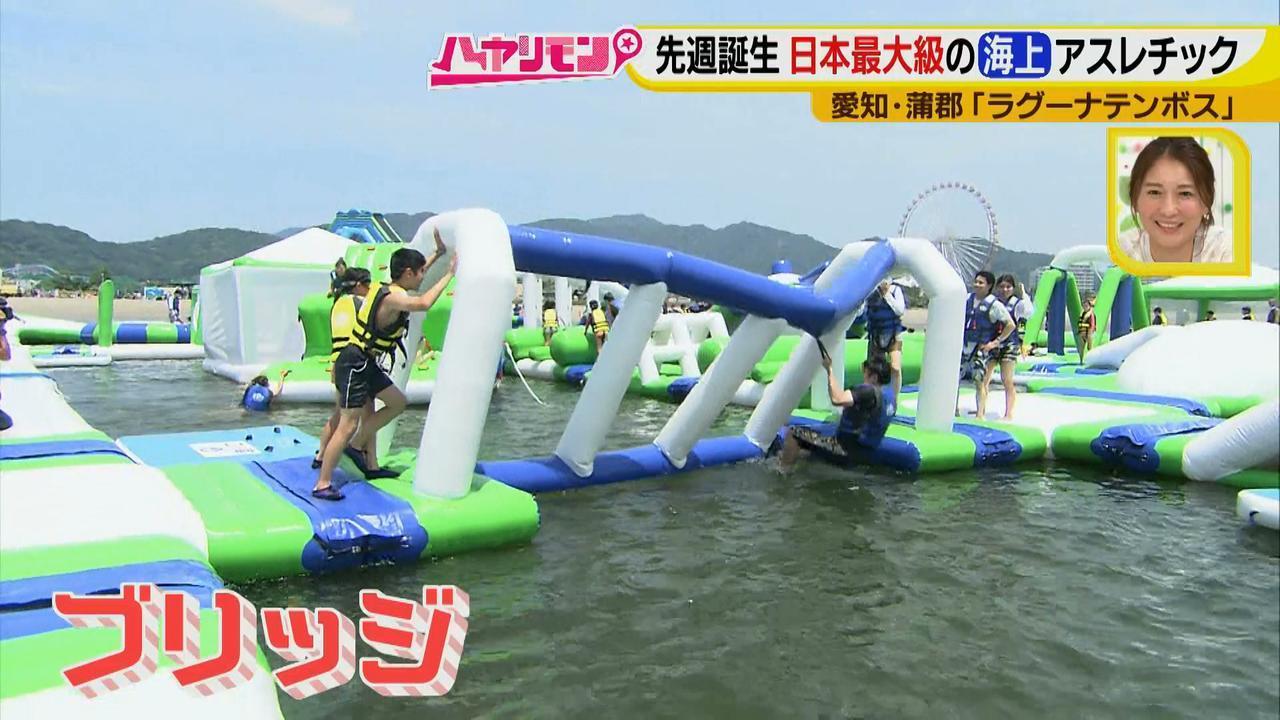 画像6: 朝から晩まで!一日中、海で遊べる蒲郡へ 日本最大級の海上アスレチックもオープン♪