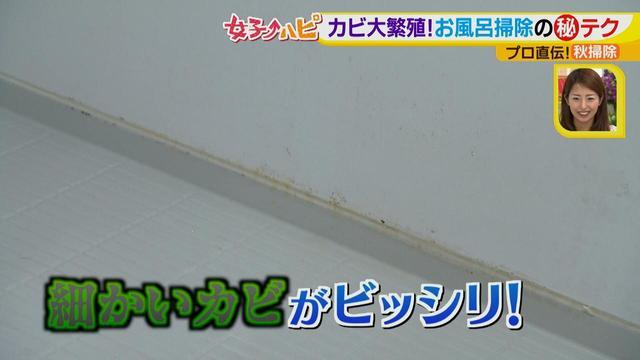 画像4: 今がオススメ!秋掃除で年末掃除がら~くらく♪ カビの繁殖を防ぐには根付く前に撃退が効果的!